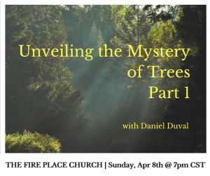 Unveiling the Mystery of Trees Part 1